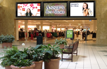 Retail industry, Mall, Outlets Indoor and Outdoor Digital Signage Solution